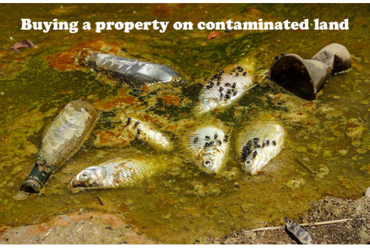 Buying a Property on Contaminated Land? What you need to do