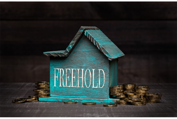Buying the Freehold of a Leasehold House