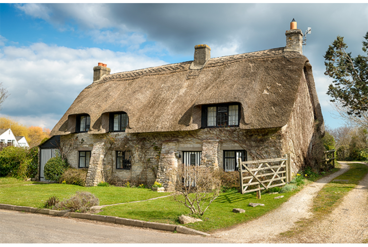 Thatched Roof Building Survey