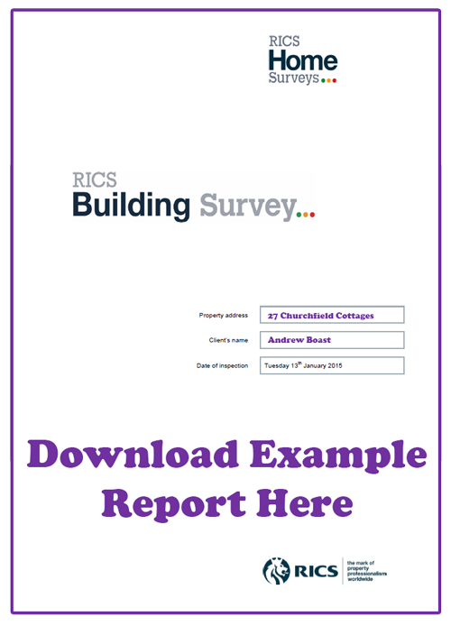 Building-Survey---Download-Example.png