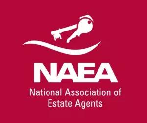 NAEA-logo.png