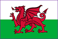 Small-Welsh-Flag-for-Land-Transaction-Tax-Calculator-page.png