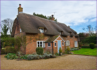Thatched-Roof-Building-Survey